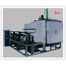 Gzls Vacuum Freeze Drying Machine for Pineapple Flakes