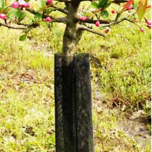 Kunststoff extrudiert Garten Baum Net