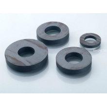 Permanent Magnet Motor en céramique