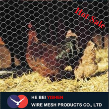 Maillage en fil de poulet Hexagonal Wire Mesh