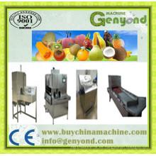 Maquinaria de corte de frutas para la venta en China