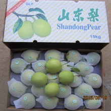 Fournisseur d'or de poire fraîche de Shandong