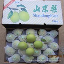 Frische Shandong Birne Export nach Indien in 15kg Karton