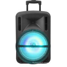 """Haut-parleur F12-1 de PA de puissance rechargeable de Bluetooth de Hayon de puissance de 15 """""""