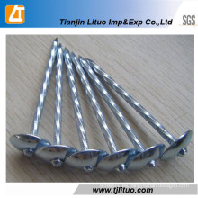 Umbrella Head Twist Shank Roofing Nails