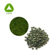Poudre d'extrait de chlorelle de suppléments nutritionnels naturels