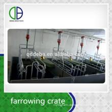 China China Supplier niedrigen Preis Pig Farrowing Stall