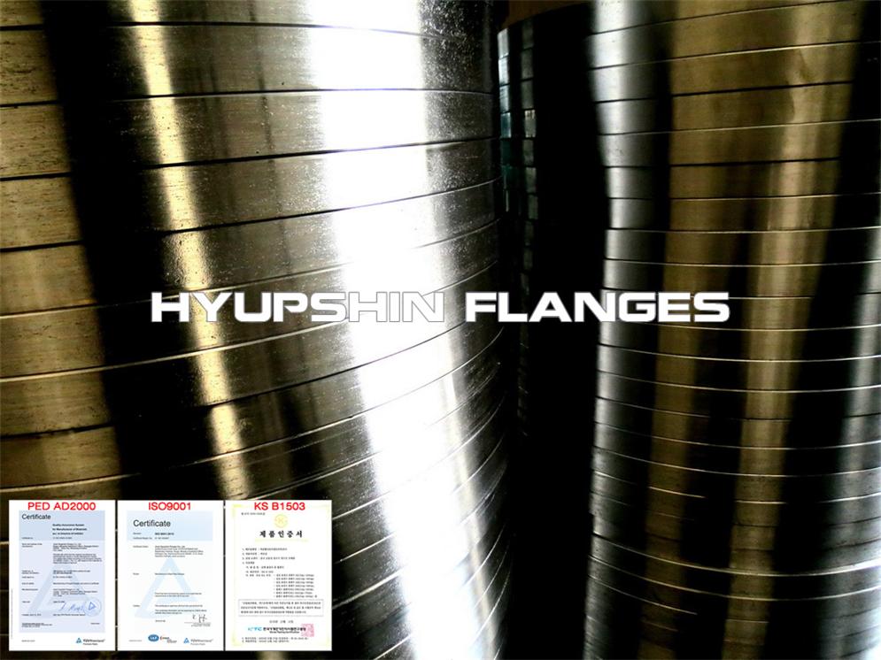 Hyupshin Flanges Sans1123