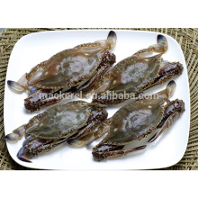 Best quality frozen cut swimming crab