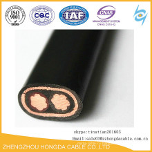 ПВХ изолированные провода Концентрического кабеля АЛ / КР 3х6
