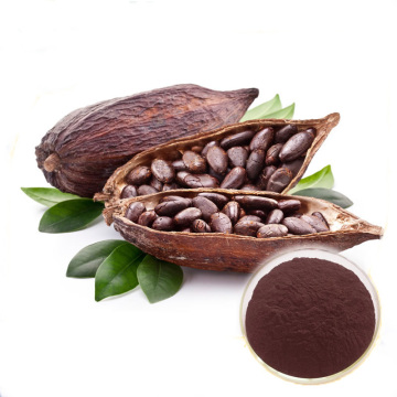 cacao huck bột chiết xuất vỏ bột