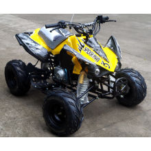 Jinyi 110cc Cheaper Quad Bike ATV (JY-100-1A)
