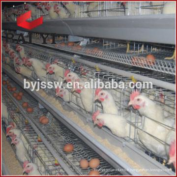 Cage de batterie de poulet de cage de cage de poulet de transport de volaille