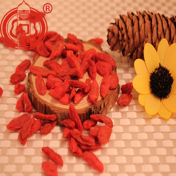 Dried Red Goji Berry Fruit