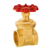 J1011 pn16 Brass gate valve SGS valve/ISO 228/1 water gate valve