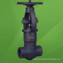 2500 Lb geschmiedeter Stahldruckdichtungsschieber (GAZ41H)