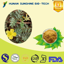 100% Natural Saponins Tribulus Terrestris Powder 20% / 40% / 70%/ 90% Saponins
