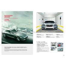BOLT Brand стальной краской Автомобильный лифт / Автомобильный лифт (5000kg) поставщик автомобильный лифт