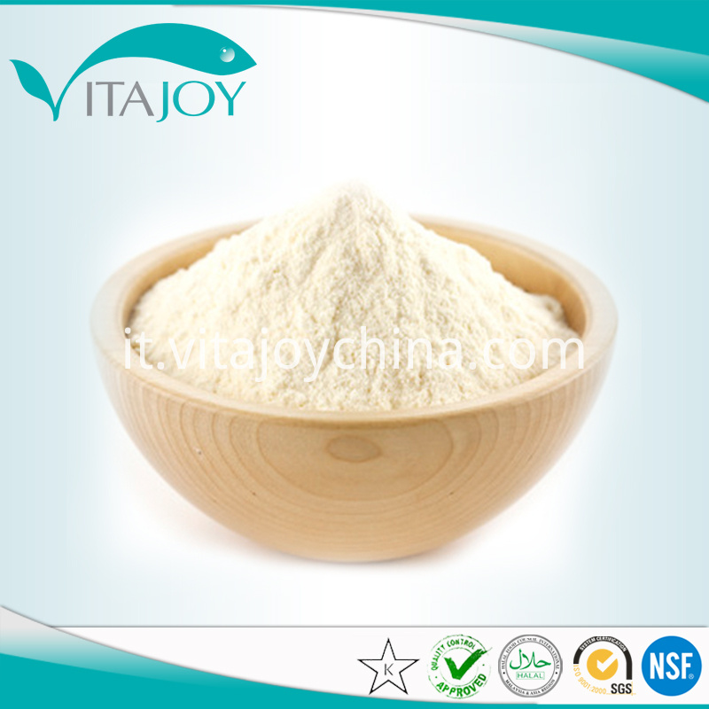 Organic garlic extract powder