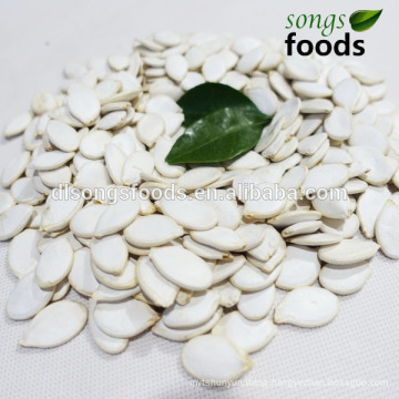 Chinese Agriculture Seed Companies