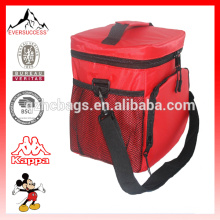 Insulated Lunch Bag Nylon Zipper Closures Large Side Pockets Bottle cooler bag Carry Handle Shoulder Strap
