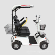 Elder and Disable Double Seats Adult Electric Scooters