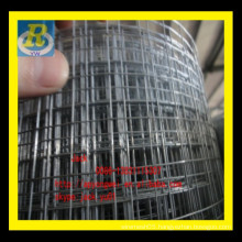 "1/2"" x1/2""galvanized welded wire mesh/1/4 galvanized heavy gauge welded wire mesh"