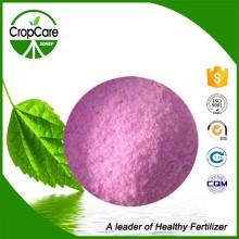 Engrais NPK soluble 19-19-19 Produit chimique