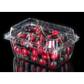 Blister Packaging Clear Plastic Clamshell Food Containers
