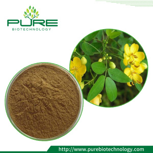 Chất chiết xuất Cassiae / Cassia Seed Extract