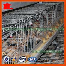 Jinfeng Équipement agricole pour nourrir les poussins