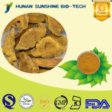 Cúrcuma de cúrcuma 100% natural / Curcuma longa L. / 50% 90% 95% 98% HPLC de curcumina