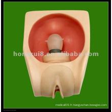 HR / F9B modèle de préservatif féminin avancé, condoms femelle