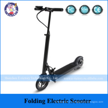 Lithium Battery Folding Electric Bike Foldable Electric Bike