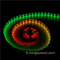 24V étanche IP65 LED Strip SMD3528 LED Strip Light