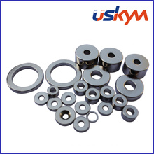 Sintered Ring NdFeB Magnets (R-007)