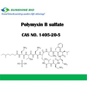 Good quality 100% for Polymyxin Sulphate Polymyxin B sulfate  CAS NO 1405-20-5 export to Cote D'Ivoire Factories