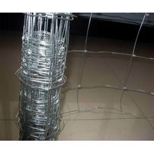 Galvanized Steel Cattle Fence/Grassland Field Fence/Poultry Mesh Fence