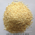 Dried Garlic Granule Good Quality From Factory