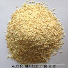 Grão de alho seco boa qualidade de fábrica