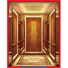 Good Decoration Low Price Observation Elevator & Passenger Lift