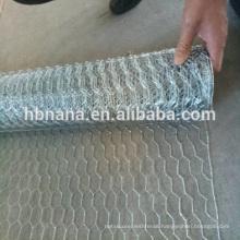 BWG 14-21 galvanized hex netting mesh / 4ft x 50ft Hexagonal Wire Netting