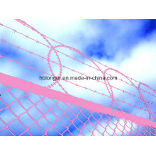 Razor Barbed Iron Wire/Concertina Iron Wire