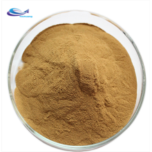 high quality product Semen Cassiae plant extract