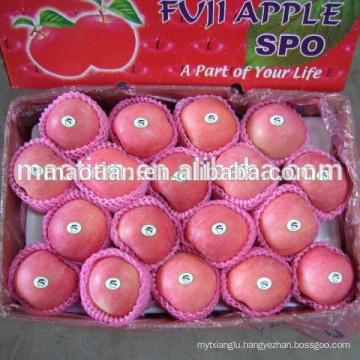 names all fruits fuji apple