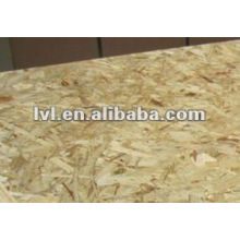 1220*2440mm WBP glue osb for building
