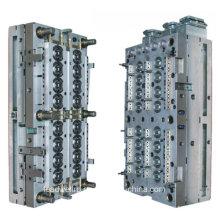 Fabricante de moldes / moldes / molduras com o certificado Ts 16949 (LW-03899)