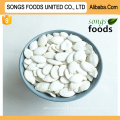 Heilongjiang Snow White Pumpkinseeds