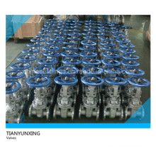 ANSI Stainless Steel CF8 Fexible / Wedge Gate Valves