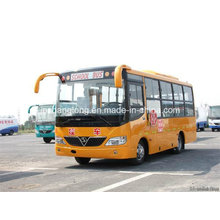 7.2 Meters Long 35 Seats or 38 Seats School Bus (3-15 years old)
